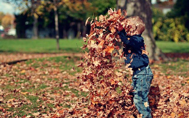 Les astuces à connaitre pour l'arrivée de l'automne